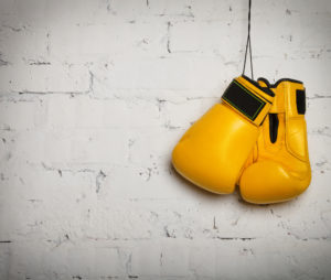 Accountant punching bag
